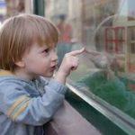 子供のおもちゃに悩む方へ!0~3歳児の子供がいる方は必見!